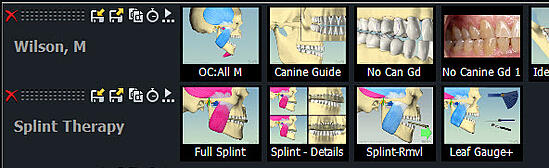 Splint Therapy Appended