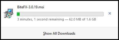 Firefox Detailed Downloading Screen