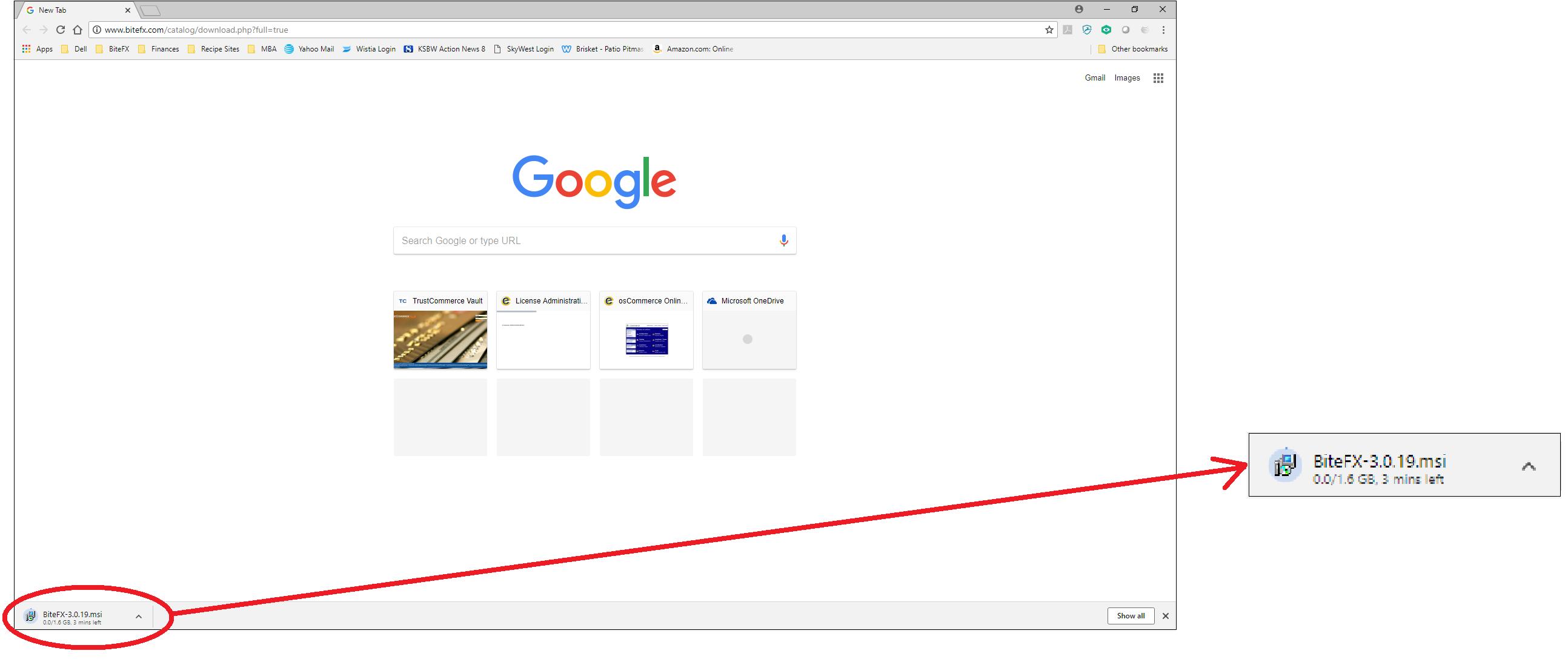 Google Download Image