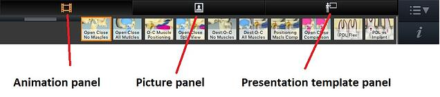 Panel Buttons at Top